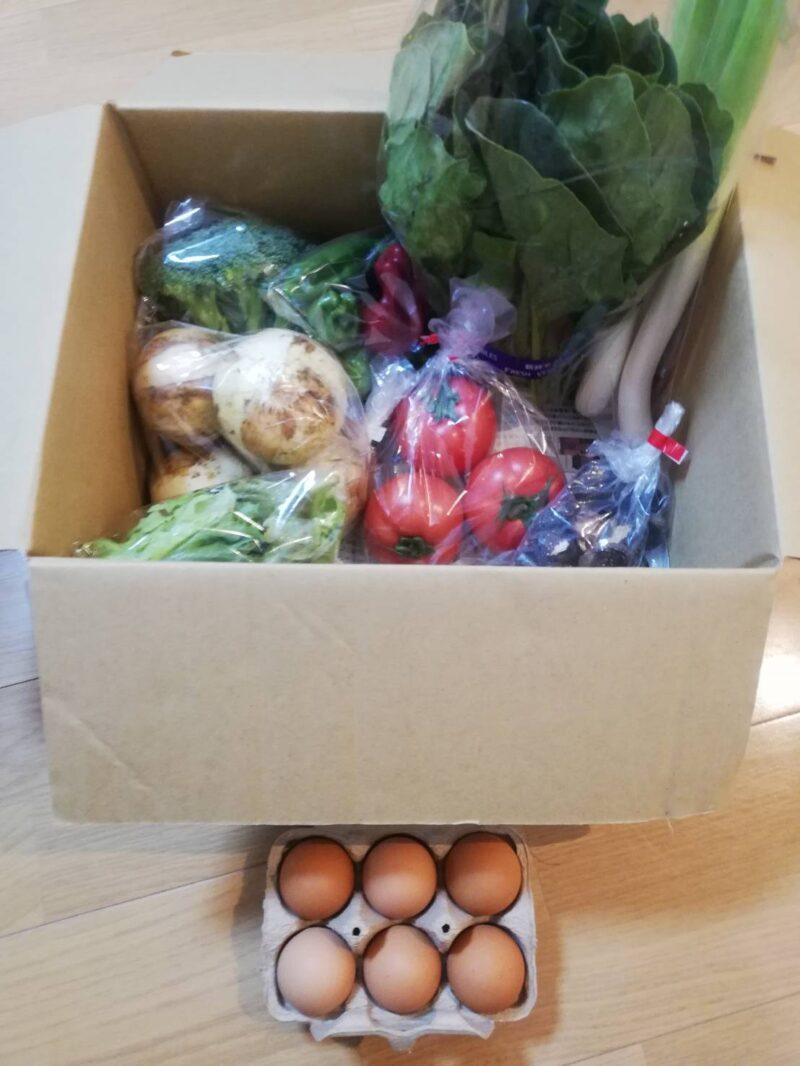 ふるさと納税 旬のお野菜+産みたて濃厚玉子6個の写真